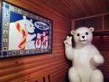 สัมผัสประสบการณ์ขั้วโลกเหนือ ณ เมืองโยโกฮาม่า