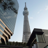 Tokyo Skytree จุดชมวิวดีๆที่ใครมาก็หลงรัก